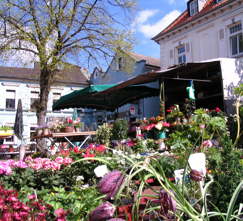 Schwalmtal Markt